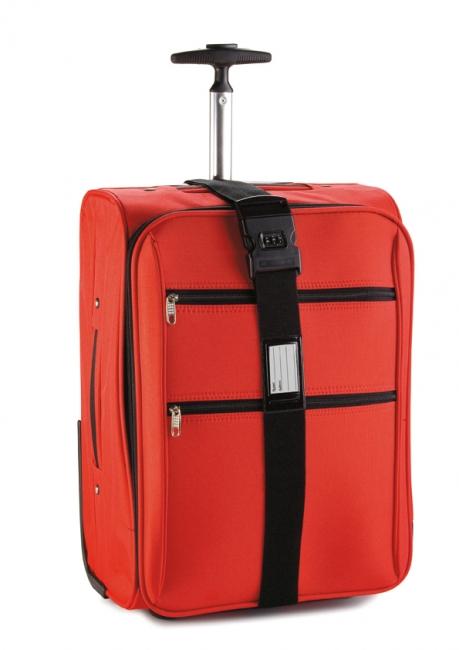 Curea pentru bagaje | 45068.30